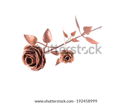 Beautiful golden rose. Isolated on a white background. - stock photo