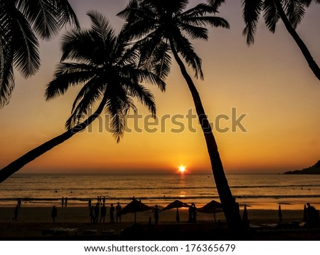 Beautiful golden sunset with palms silhouettes on the beach, GOA, India