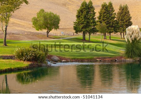 Beautiful golf course green next to a water hazard in late afternoon sunlight