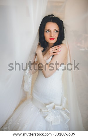 beautiful gorgeous stylish bride under tulle near a window in the morning in the room - stock photo