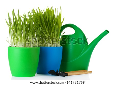 beautiful grass in a flowerpots, watering can and garden tools isolated on white - stock photo