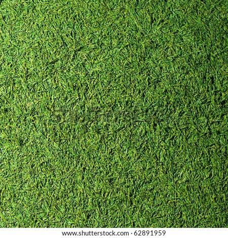 Beautiful grass texture of golf course - stock photo