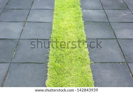 Beautiful grass tiles walk way in the garden - stock photo