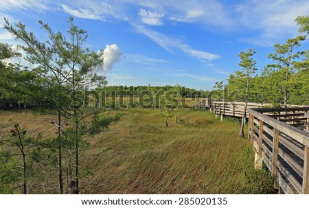 Beautiful Grassy Waters Preserve with elevated boardwalks for nature viewing - stock photo