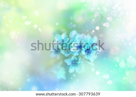 Beautiful green blue flower background, spring background with sunshine. - stock photo