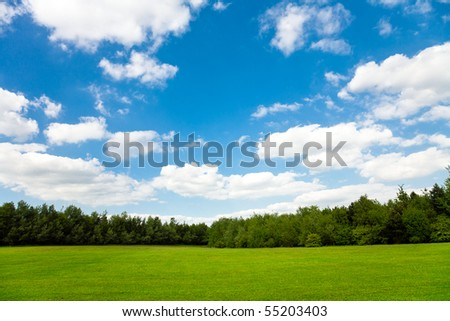 Beautiful green field and blue sky - stock photo