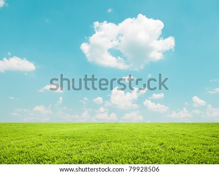 Beautiful green field and blue sky - natural landscape view - stock photo