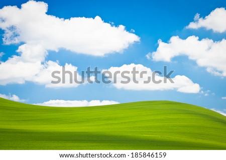 beautiful green field during springtime - stock photo