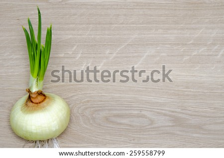 Beautiful green fresh spring onion on a wooden background, traditional food ingredients, healthy eating, healthy food concept - stock photo