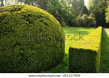 Beautiful green garden in spring. - stock photo
