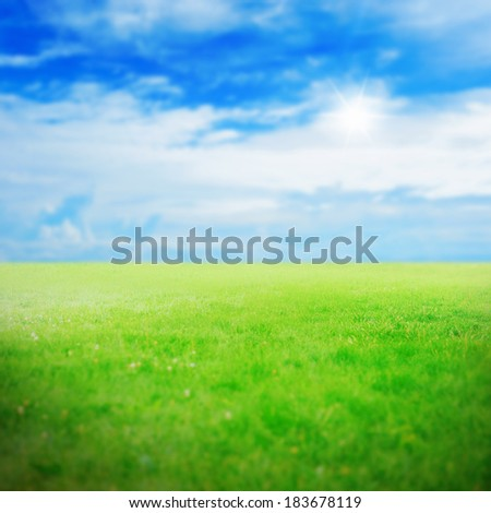 Beautiful green grass against a blue sunny sky - stock photo