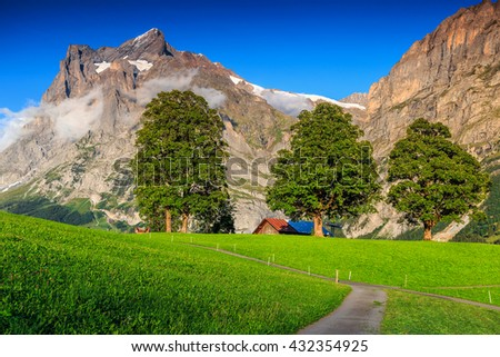Beautiful green grass and spectacular rural farm in Grindelwald mountain village,Bernese Oberland,Switzerland,Europe