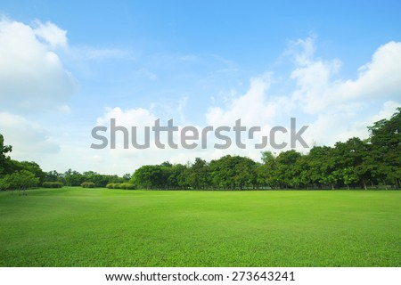 beautiful green grass field and fresh plant in vibrant meadow against white cloud on blue sky use as natural summer season background,backdrop - stock photo
