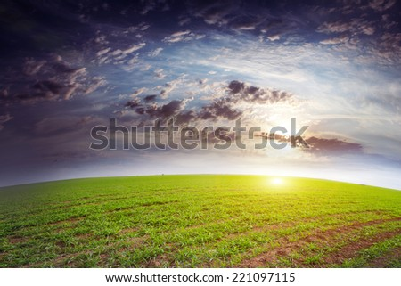 beautiful green herb on the field and celestial landscape - stock photo