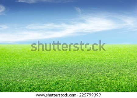 beautiful green herb on the field and year sky - stock photo