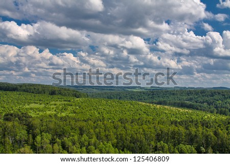 Beautiful green landscape with trees - stock photo