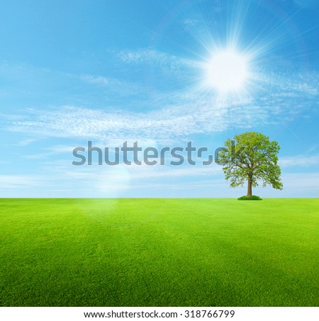 Beautiful green landscape with vibrant blue sky.