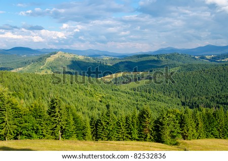 Beautiful green mountain landscape with trees in Carpathians - stock photo