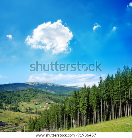 Beautiful green mountain landscape with trees in Carpathians. Bukovel region, Ukraine - stock photo