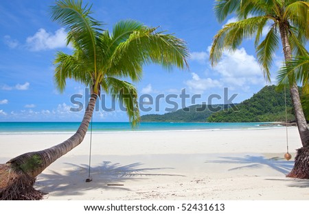 Beautiful green palm trees at tropical beach - stock photo