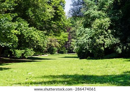 beautiful green park - stock photo