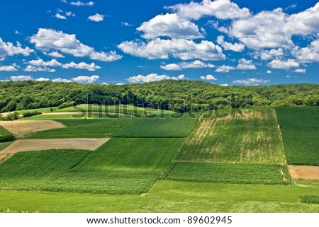 Beautiful green scenery landscape fields in spring time under clue cloudy sky, Croatia - stock photo
