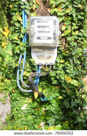 Beautiful green tree with Electric meter - stock photo