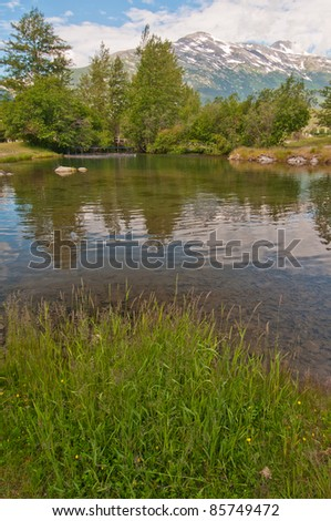 Beautiful greenery with snowy mountain range in background in summer. - stock photo
