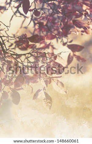 Beautiful grunge autumnal background with red leaves  - stock photo