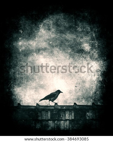 Beautiful grunge vintage wallpaper, Bird on roof, bird silhouette - stock photo