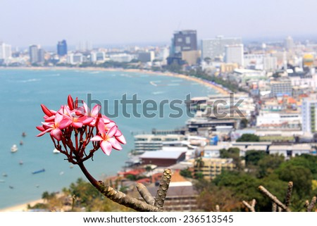 Beautiful gulf and city landscape of Pattaya, Thailand - stock photo