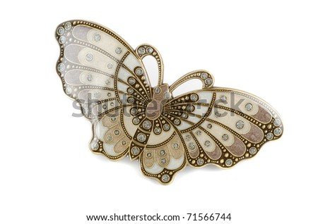 Beautiful hairpin-butterfly isolated on white background - stock photo