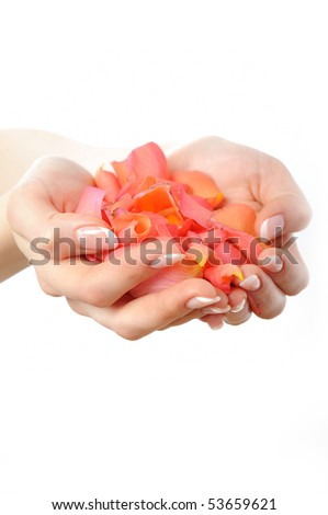 Beautiful hand with perfect french manicure on treated nails holding rose flower petals. isolated on white background - stock photo