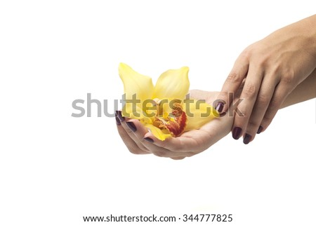 Beautiful hands with perfect nail manicure and yellow orchid on a white background - stock photo