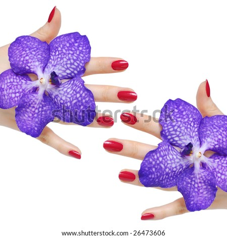 Beautiful hands with pink manicure and two orchids - stock photo