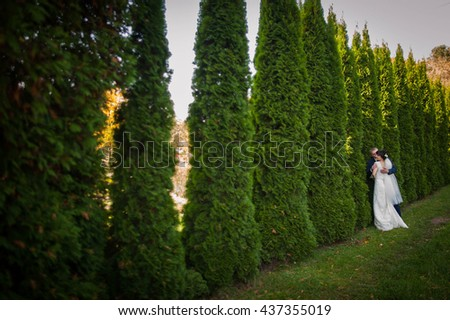 Beautiful happy young bride and groom,  wall of green trees