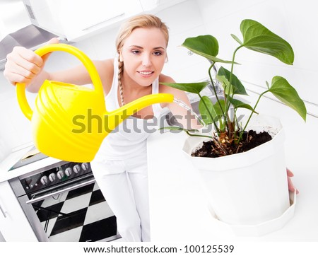 beautiful happy young housewife watering  the flower in the kitchen at home - stock photo