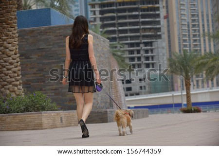 beautiful happy young  woman in black dress with cute small dog puppy have fun on street - stock photo