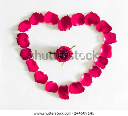 beautiful heart of pink rose petals  on white backgronud - stock photo