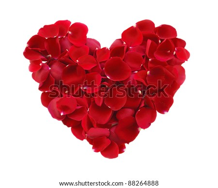 beautiful heart of red rose petals isolated on white - stock photo