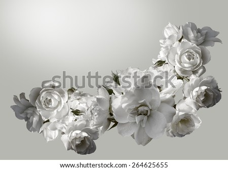 Beautiful horizontal frame with a bouquet of white roses with rain drops. Black and white toning image. Overhead view. - stock photo