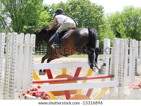 Beautiful horse jumping over hurdles - stock photo