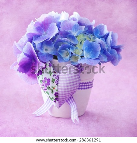 beautiful hydrangea flowers in a pot decorated with a heart. grunge paper background.  - stock photo
