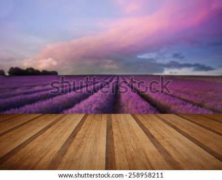 Beautiful image of lavender field Summer sunset landscape with wooden planks floor - stock photo