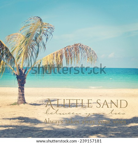 beautiful instagram of lone palm tree on a tropical beach with ocean with quote  - stock photo