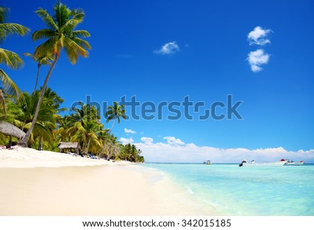 Beautiful island and exotic tropical nature - stock photo