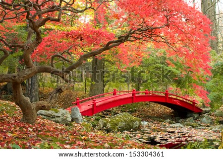 Beautiful Japanese Garden and red bridge - stock photo