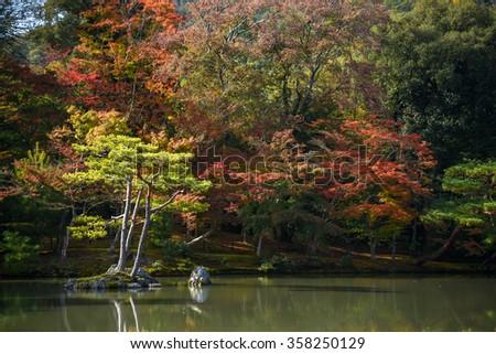 Beautiful Japanese garden in autumn of Kinkakuji Temple (The Golden Pavilion), one of famous landmarks in Kyoto, Japan - stock photo
