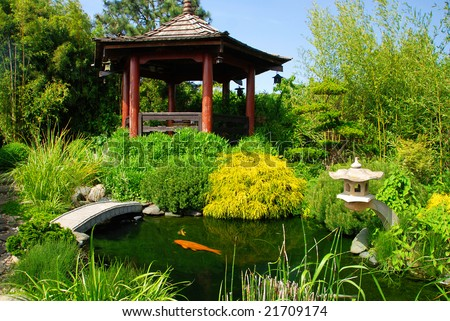 Beautiful Japanese garden with many plant pecies and water pond where you can see koi fish