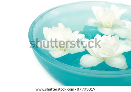 Beautiful Jasmine Flowers in Bowl on White Background - stock photo